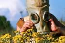 Wiosna – koszmar dla alergika
