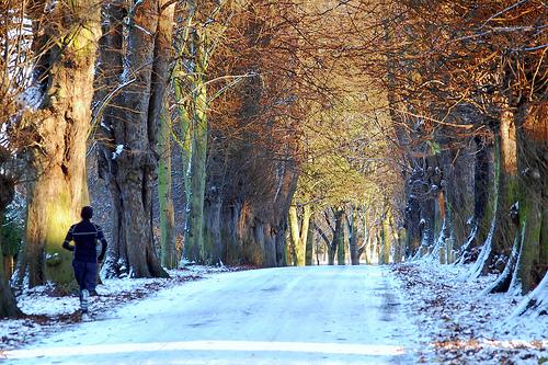 Zimowe bieganie w pigułce