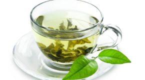Wszystko o zielonej herbacie