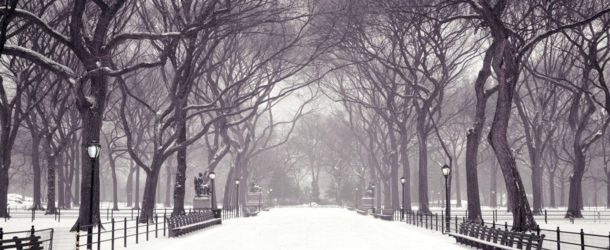Jesienno-zimowa profilaktyka chorobowa