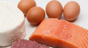 Źródła białka w diecie