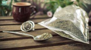 Dlaczego warto pić herbatkę z czystka?