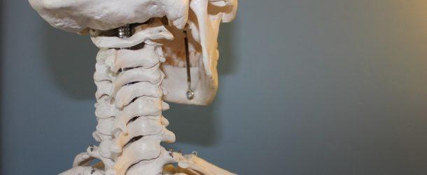 Ból pleców – choroba cywilizacyjna