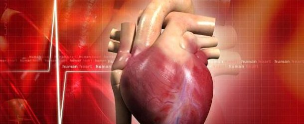 Suplementy na serce