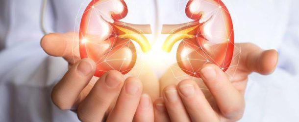 Zapalenie nerek – objawy i leczenie