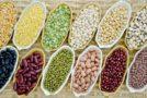 Właściwości roślin strączkowych